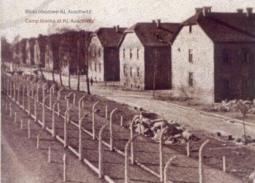 Bloki obozowe KL Auschwitz. Fot. AIPN