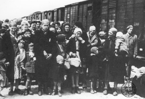Women and children upon arriving at the KL Auschwitz-Birkenau camp, May 1944 Photo: AIPN
