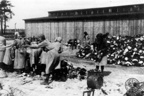 Group of prisoners sorts personal belongings of prisoners from a transport to KL Auschwitz-Birkenau, May 1944 Photo: AIPN