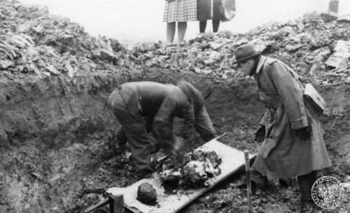 Effects of the eugenic madness of the Germans: human remains pulled out of the death hole and put on stretches during the exhumation of the patients of the hospital for the mentally ill in Kraków-Kobierzyn in 1946, brutally murdered by the Germans during the occupation. Photo from the collection of the Institute of National Remembrance