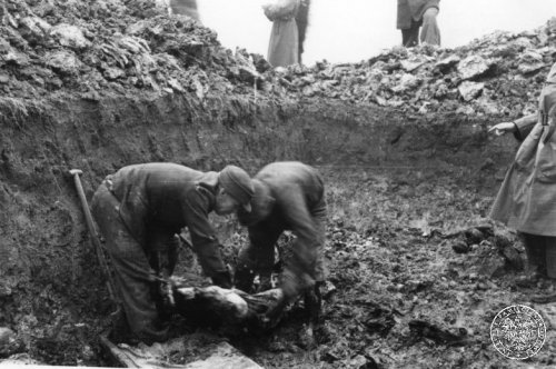 Digging up remains of patients of the hospital for mentally ill in Kraków-Kobierzyn, victims of the German murders conducted during the occupation. Exhumations led in November 1946. Photo from the collection of the Institute of National Remembrance